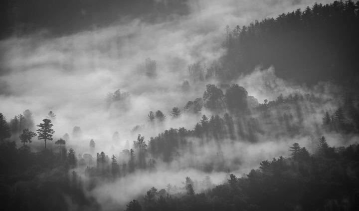 foggy-1149180_1280
