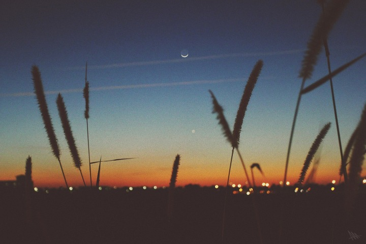 sunset-924949_1920