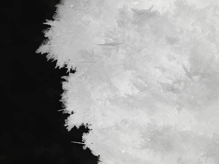 winter-288793_1920