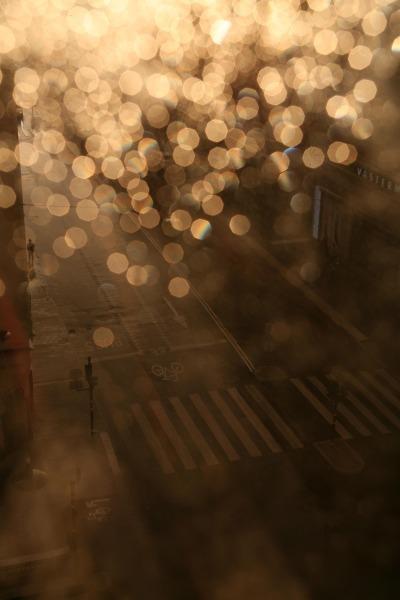 rain-1401898_1920