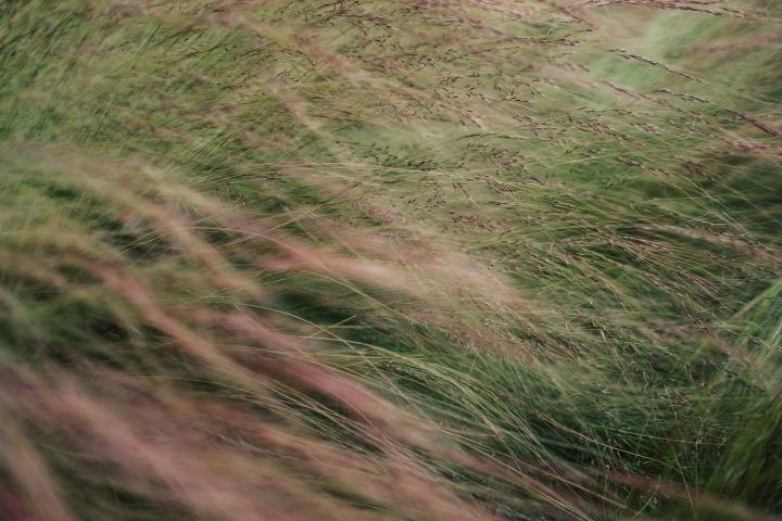 blur-1850048_1920